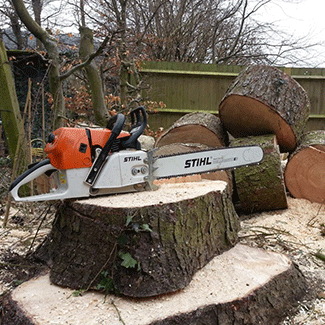 Tree Surgeon Bristol