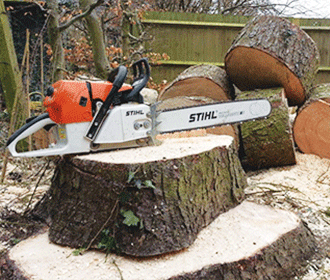 Tree Removal Bristol