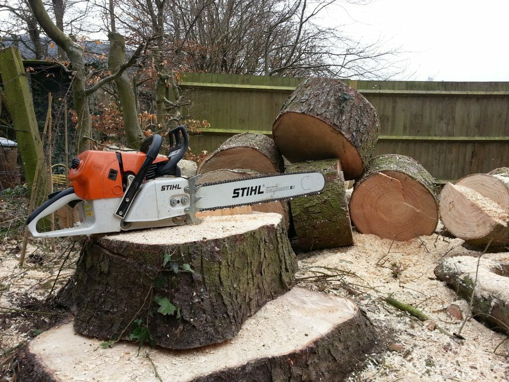 Tree Surgeon Bristol